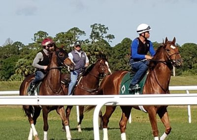 Payson Park placed confidence in Equinox Racing !!
