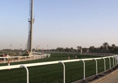 King Abdulaziz Racetrack, Saudi Cup 2020