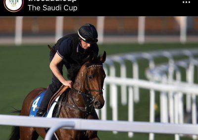 Saudi Cup 2020